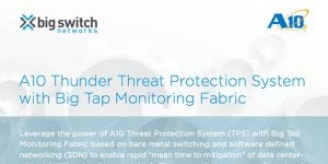 A10 Thunder Threat Protection System with Big Tap Monitoring Fabric