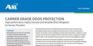 Carrier Grade DDoS Protection