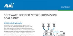Software Defined Networking (SDN) Scale-out