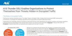 Thunder SSLi Enables Organizations to Protect Themselves from Threats Hidden in Encrypted Traffic