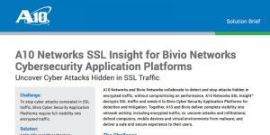 A10 Networks SSL Insight for Bivio Networks Cyber Security Application Platforms
