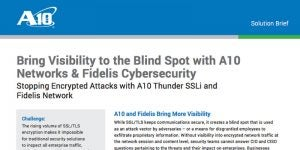 Bring Visibility to the Blind Spot with A10 Networks & Fidelis Cybersecurity