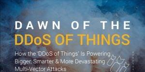 Dawn of the DDoS of Things