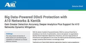 Big Data-Powered DDoS Protection with A10 Networks & Kentik
