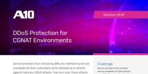 Combating DDoS Attacks in a CGNAT Environment