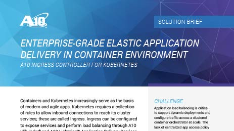 Enterprise-Grade Elastic Application Delivery in Container Environment