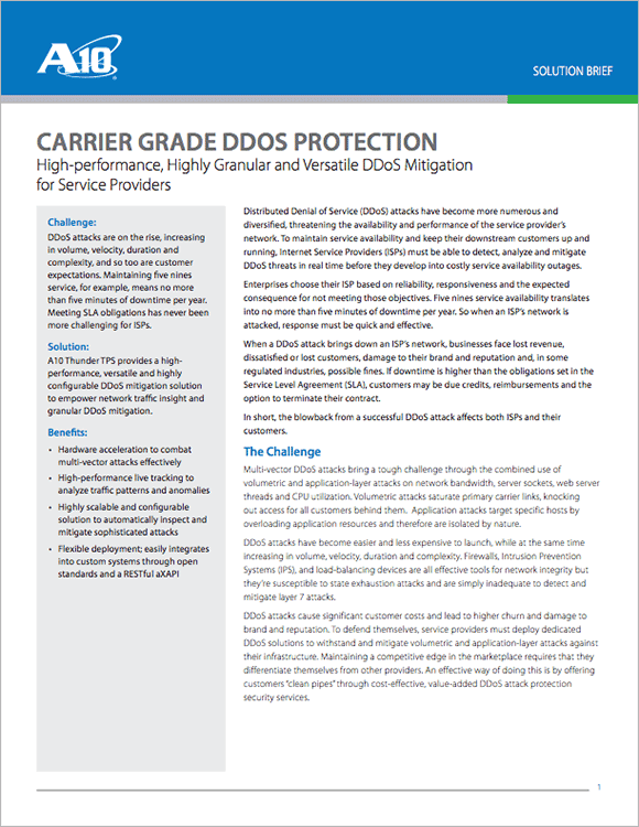 Carrier Grade DDoS Protection