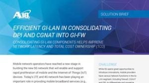 Efficient Gi-LAN in Consolidating DPI and CGNAT into Gi-FW