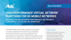 High-Performance Virtual Network Functions for 5G Mobile Networks