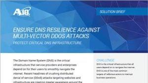 Ensure DNS Resilience Against Multi-vector DDOS Attacks