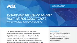 Ensure DNS Resilience Against Multi-vector DDOS Attacks
