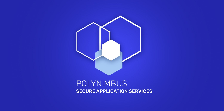 Polynimbus Webinar
