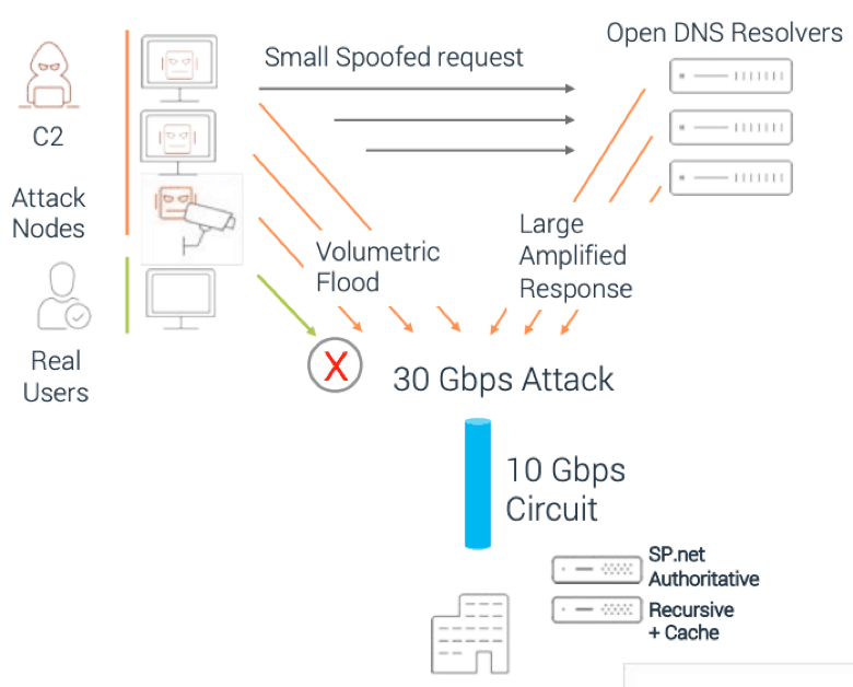 Diagram showing how DNS attacks are delivered via volumetric floods or amplified responses