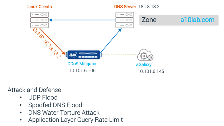 Diagram showing how a DNS mitigator processes incoming traffic