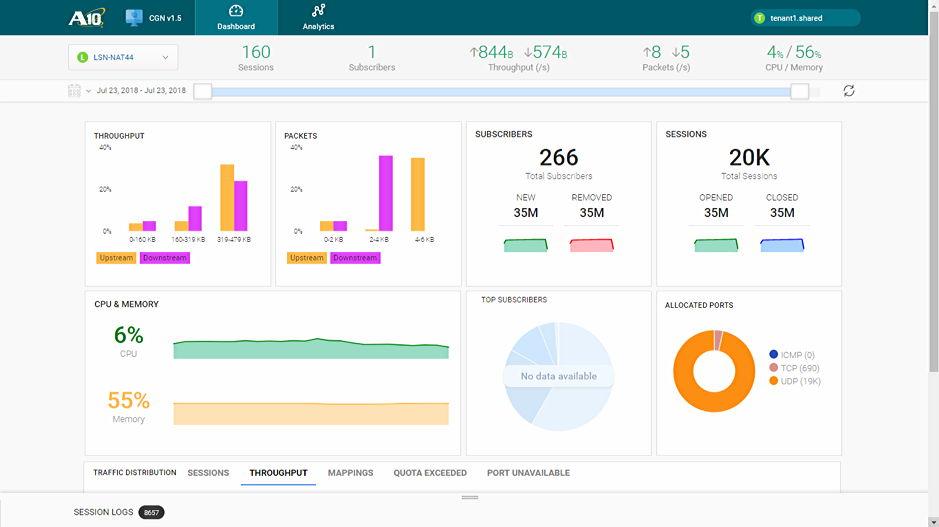A10 Harmony CGN App Traffic Dashboard