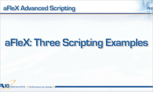 Introduction to the AX Series aFleX Scripting Tool