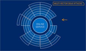 Rise Multi-vector DDOS Attacks