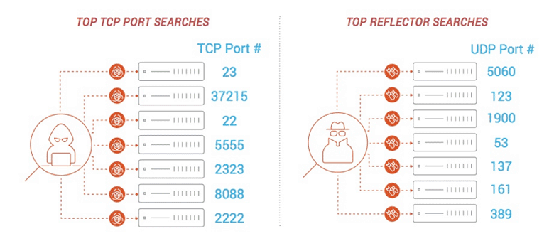 Graphic showing top TCP and UDP searches